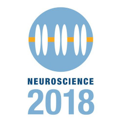 Wide representation at SfN symposium in San Diego, November 2018