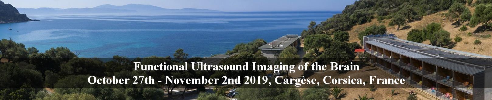fUSbrain2019: International workshop on Functional Ultrasound Imaging of the Brain